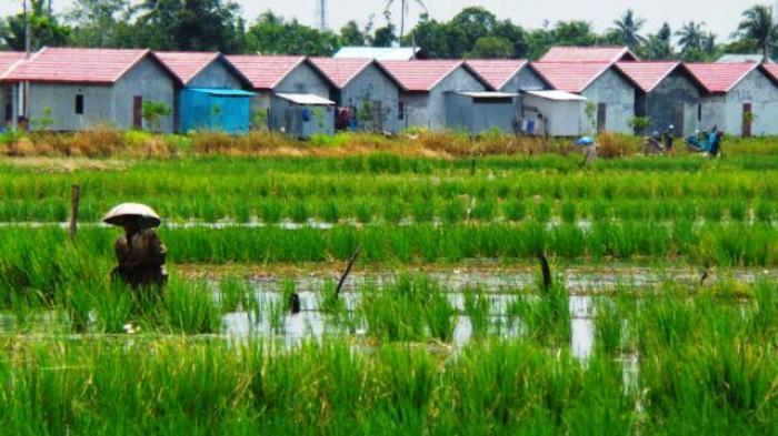 STN: Bentuk Dewan Tani dan Cabut UU yang Menghambat Reforma Agraria