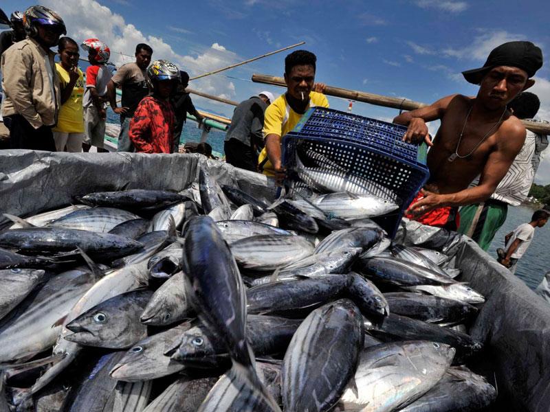 Fisheries Cooperation : Poros China – AS Kuasai Laut dan Ikan Indonesia
